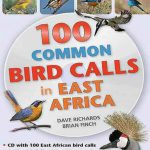100-Common-Bird-Calls-in-East-Africa